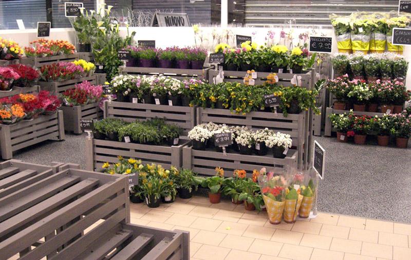 vendita al dettaglio di piante